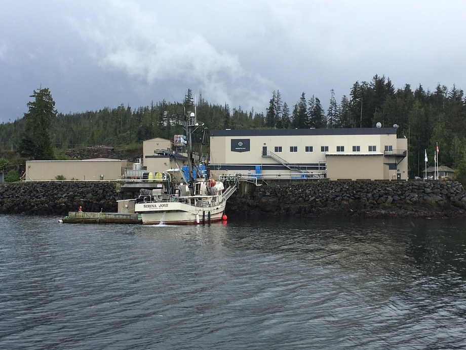 Port Hardy tops processing league - FishFarmingExpert com