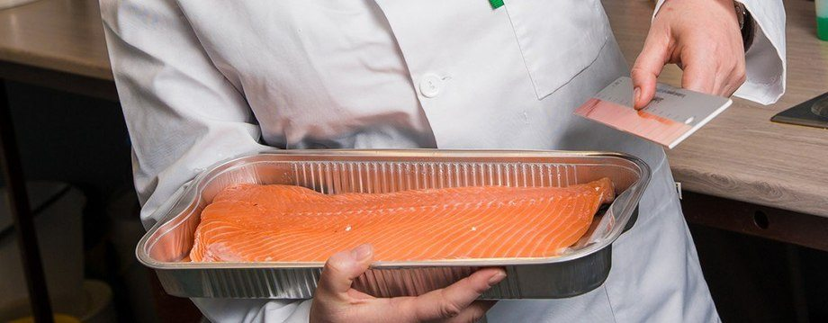 Trine Ytrestøyl's research has shown that the level of omega-3 in feed affects the colour of the salmon, and has suggested that stress also plays a role (photo: Terje Aamodt/Nofima).
