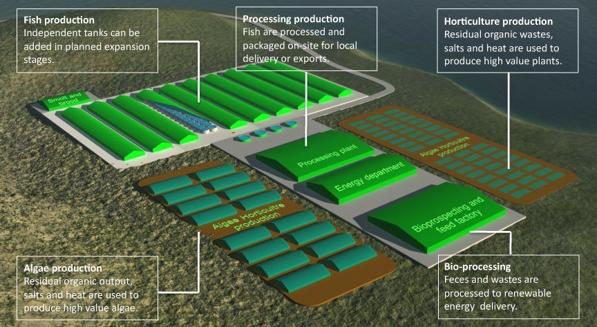 Niri's concept of a fully-integrated RAS salmon farm, where waste is utilised on-site, may be one option at Machrihanish. Image: Niri
