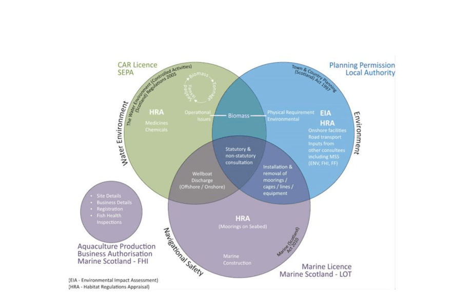 A diagram from the 2016 report illustrating the complexity of aquaculture consenting.