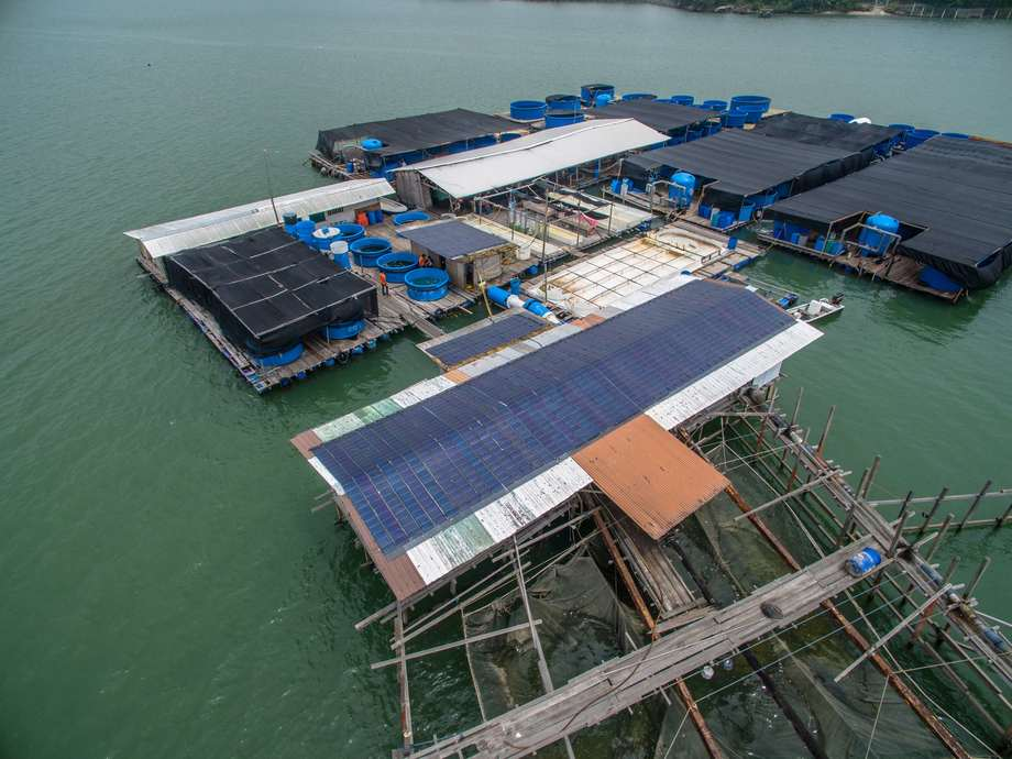 A Singapore Aquaculture Technologies site. The company has been using a closed containment system since 2012.