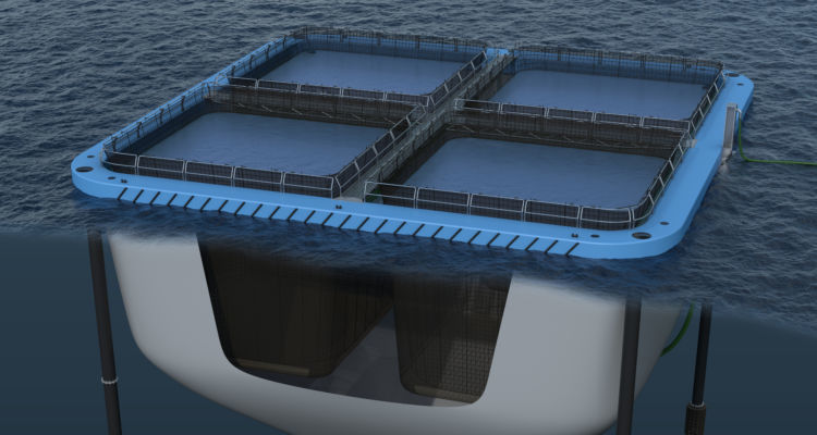 Ecomerden has designed a closed cage which can be used for broodfish or as a slaughter / holding pen. Illustration: Ecomerden.