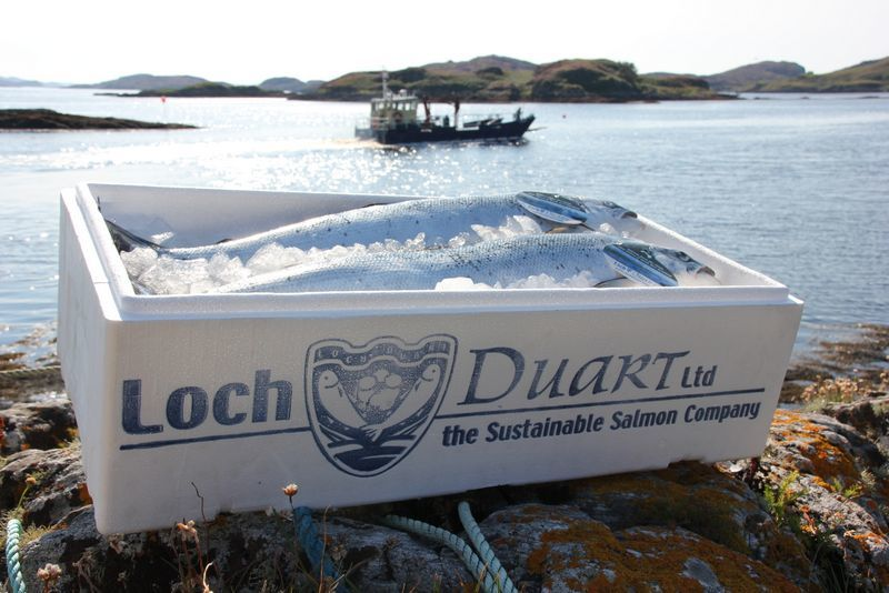 Loch Duart farms in Sutherland and the Uists. Photo: Loch Duart.