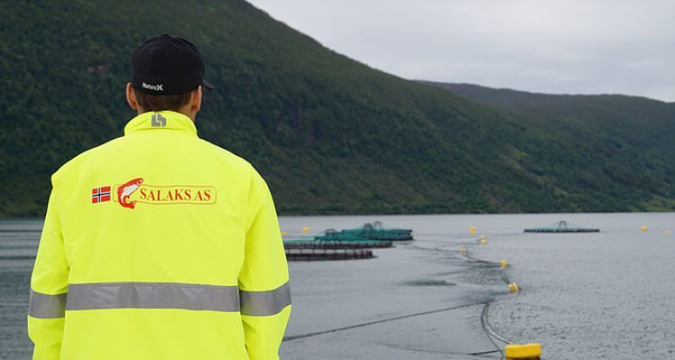Salaks hopes to nearly double capacity if it wins approval for the FjordMax.