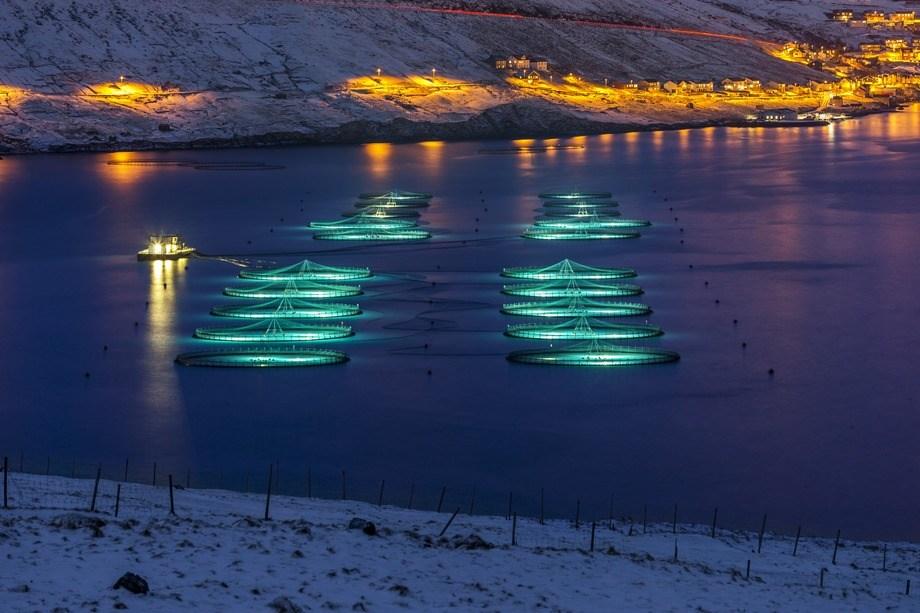 Bakkafrost is the largest fish farming company in the Faroe Islands.