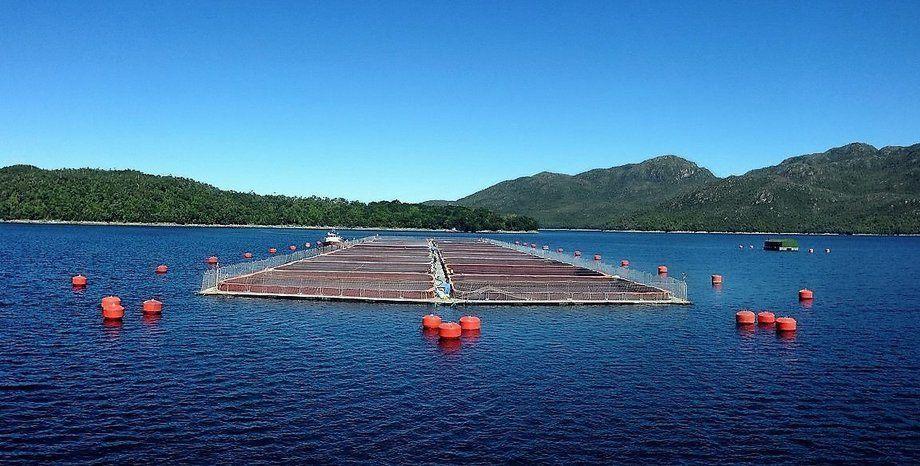 Centro de cultivo certificado ASC. Foto: Los Fiordos.