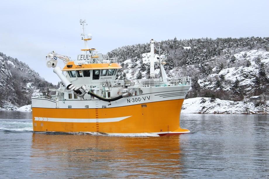 Båten har en kostnadsramme på cirka 40 millioner kroner og skal rigges for både not og snurrevad. Foto: Skogsøy Båt