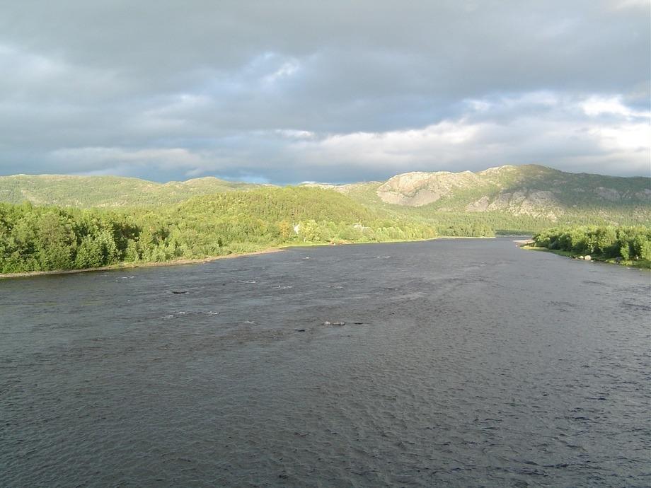 Forskere setter nå ut oppdrettslaks med sporingsenheter for å se om fisken svømmer opp eksempelvis i Altaelva. Foto: Glivi/Wikipedia.