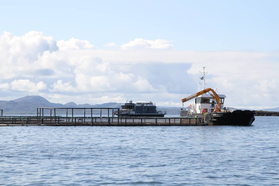 Marine Harvest plans to increase the capacity of its farm off Muck to 3,500 tonnes. Photo: Arthur Campbell