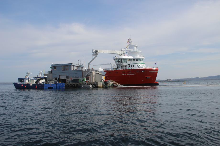 With Harvest ute på oppdrag på merdkanten. Foto: Egil Ulvan Rederi.