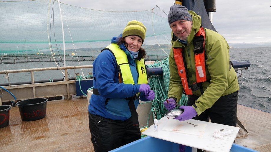 Mari Darrud og Sigurd Hytterød fra Veterinærinstituttet under feltarbeid. Foto: David A Strand, Veterinærinstituttet.
