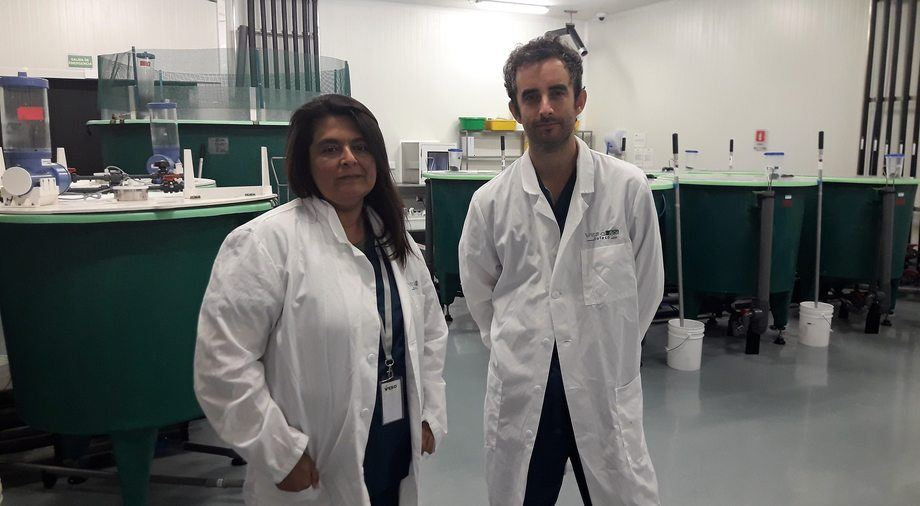 Dra. Claudia Venegas y Dr. Vicente castro. Foto: Loreto Appel, Salmonexpert.