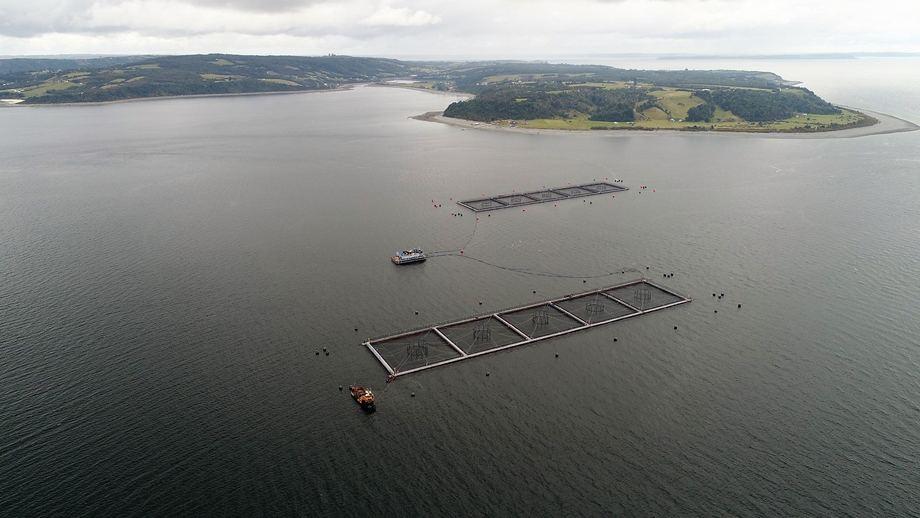 Centro de cultivo Punta Redonda. Foto: Marine Harvest Chile.