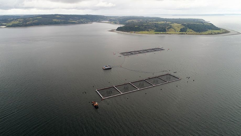 The Punta Redonda farm in Chile, pictured before storms wrecked one module and badly damaged the other. Photo: Marine Harvest