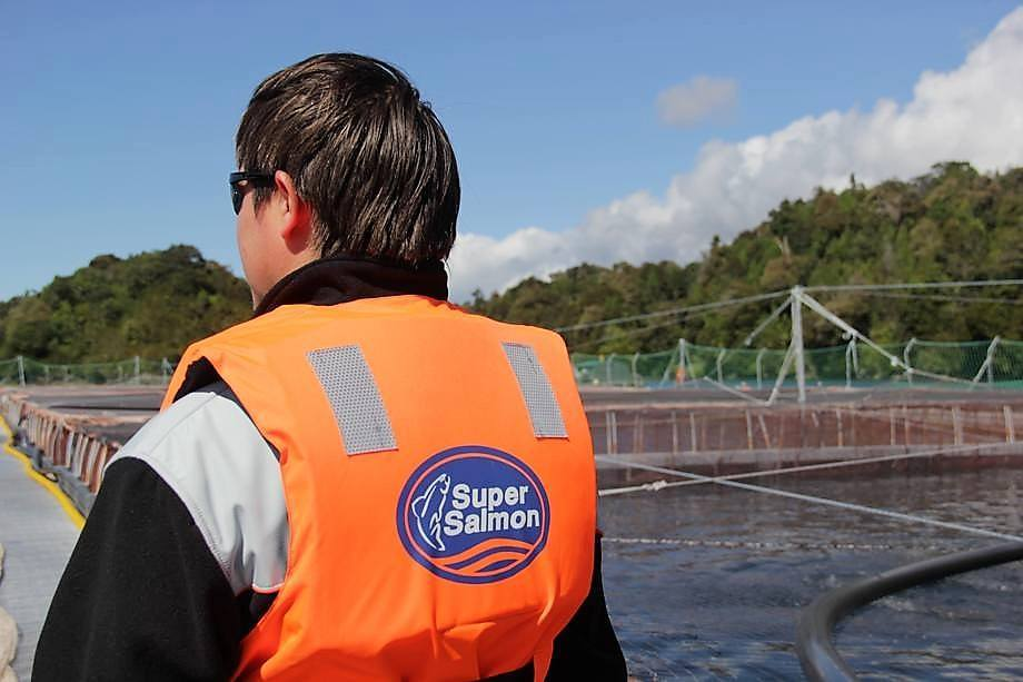 Agrosuper es el mayor grupo exportador de salmón chileno, tras las últimas adquisiciones. Foto: Archivo Salmonexpert.