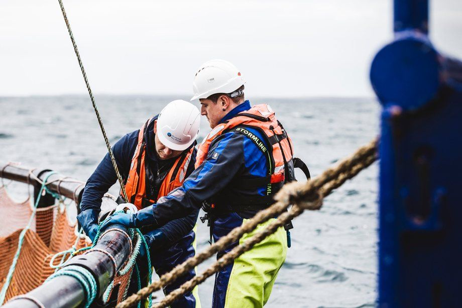 Scottish Sea Farms earned less than in Q3 2017 but harvested fish had a favourable average weight. Photo: SSF