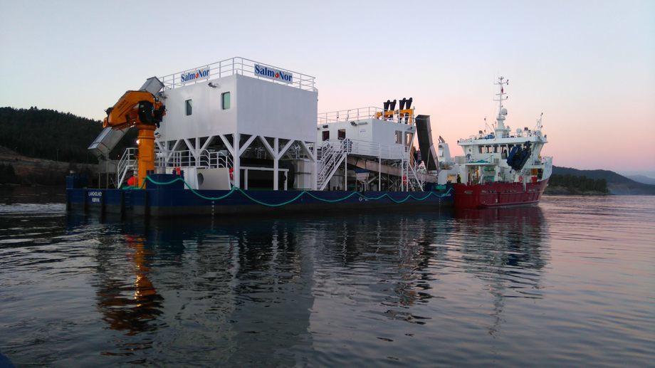 «Langholmen» er et av SalmoNor sitt våpen i lusekrigen. Her kan man se Hydrolicer-plattformen og følgebåt bemannet av personell fra KB Dykk AS. Foto: Halsnøy Dokk AS