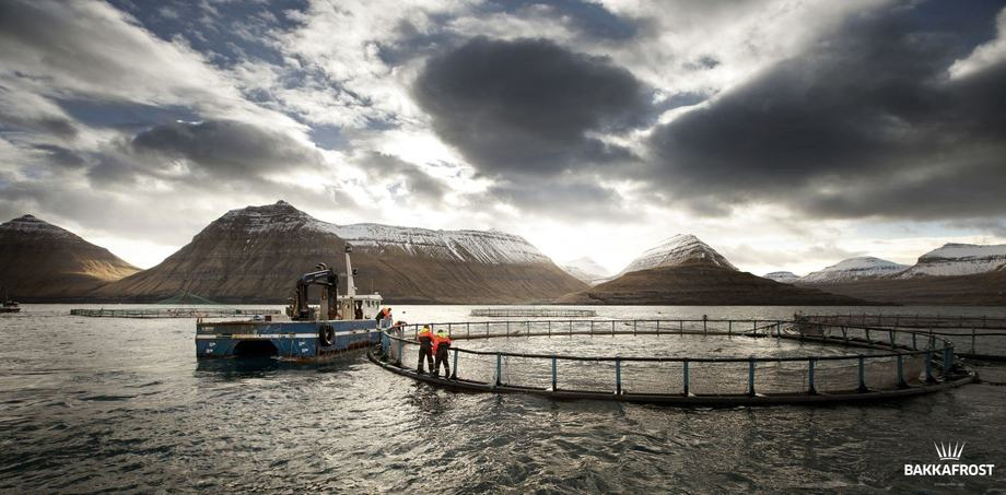 A Bakkafrost site in the Faroes. The company has now extended its reach to Scotland, and has secured new credit arrangements to help pay the purchase of SSC. Photo: Bakkafrost.