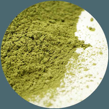 Futerpenol es un aditivo no farmacológico, con moléculas bioactivas botánicas y algales. Su presentación es en polvo para ser incorporado en el alimento o en forma de premix. Imagen: MNL Group.