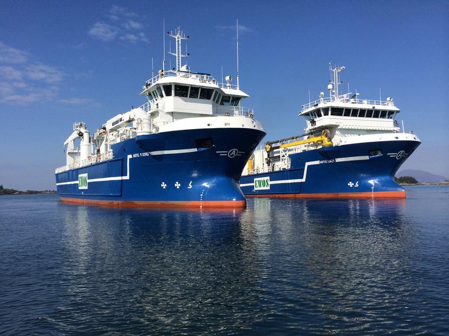 Artic Shipping har fem selvlossende skip, som opererer på TC-kontrakter med Cargill. Foto: Artic Shipping.