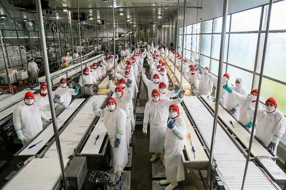 La Planta Procesadora Quellón fue aprobada inicialmente por la Autoridad mediante la RCA Nº 507 en el año 2000. Imagen: Los Fiordos.
