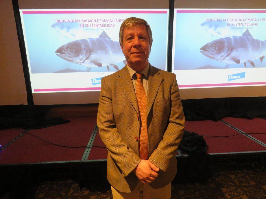 Nicos Nicolaides, gerente general de Nova Austral. Foto: Jonathan Garcés, Salmonexpert.
