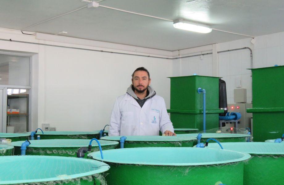 Álvaro Gallardo, biólogo marino, está a cargo del proyecto. Imagen: Francisco Soto, Salmonexpert.