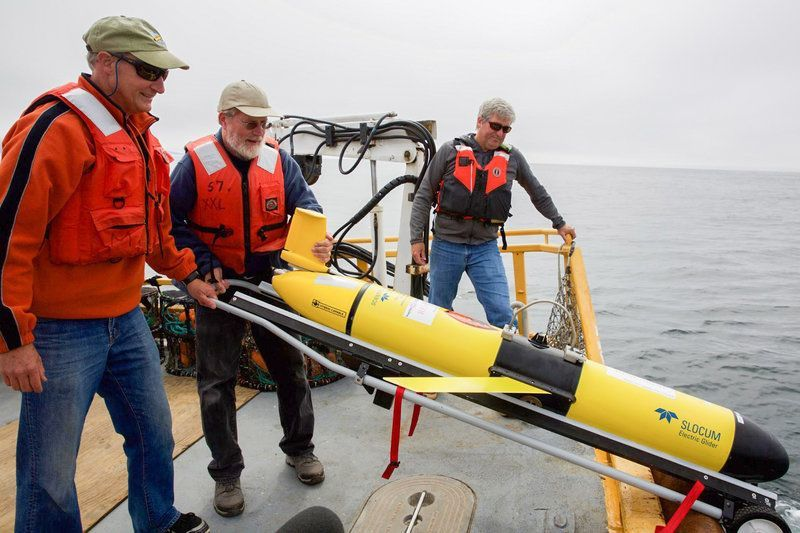 Picture: Jack Barth, Oregon State University oceanographer, deploys a glider that will spend weeks at sea collecting data on everything from dissolved oxygen levels to temperature. Source: Kristian Foden-Vencil/Oregon Public Broadcasting/npr.org