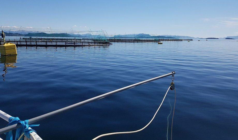Oktober er over og skriver seg inn i historiebøkene som den travleste måneden for Njord Aqua. Foto: Njord Aqua.