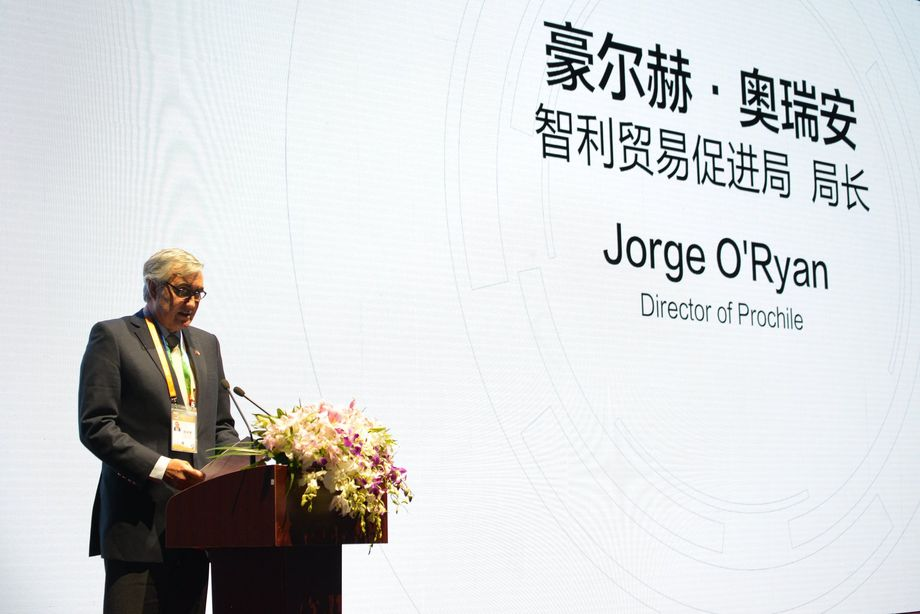Jorge O'Ryan, director deProchile duranteChileWeek en Shanghai. Imagen: Prochile.