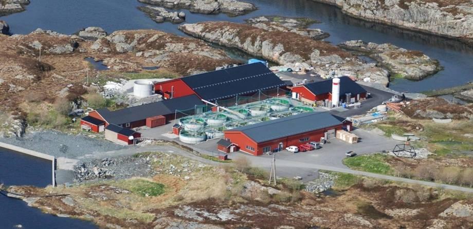 Smøla klekkeri og settefiskanlegg er en lokaleid bedrift lokalisert på Smøla i Møre og Romsdal. Foto: Smøla klekkeri og settefiskanlegg.