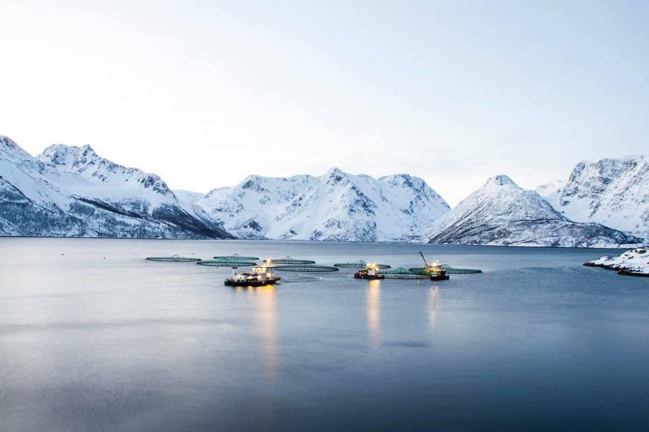 Illustrasjonsfoto av ene lokaliteten til Grieg Seafood Finnmark. Lokaliteten på bildet er ikke en av de omtalte lokalitetene. Foto: Grieg Seafood Finnmark
