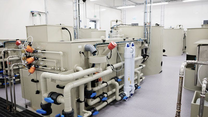 Skretting's state-of-the-art R&D facilities allow it to investigate the impact of feeds on bio-filters. Photo: Skretting