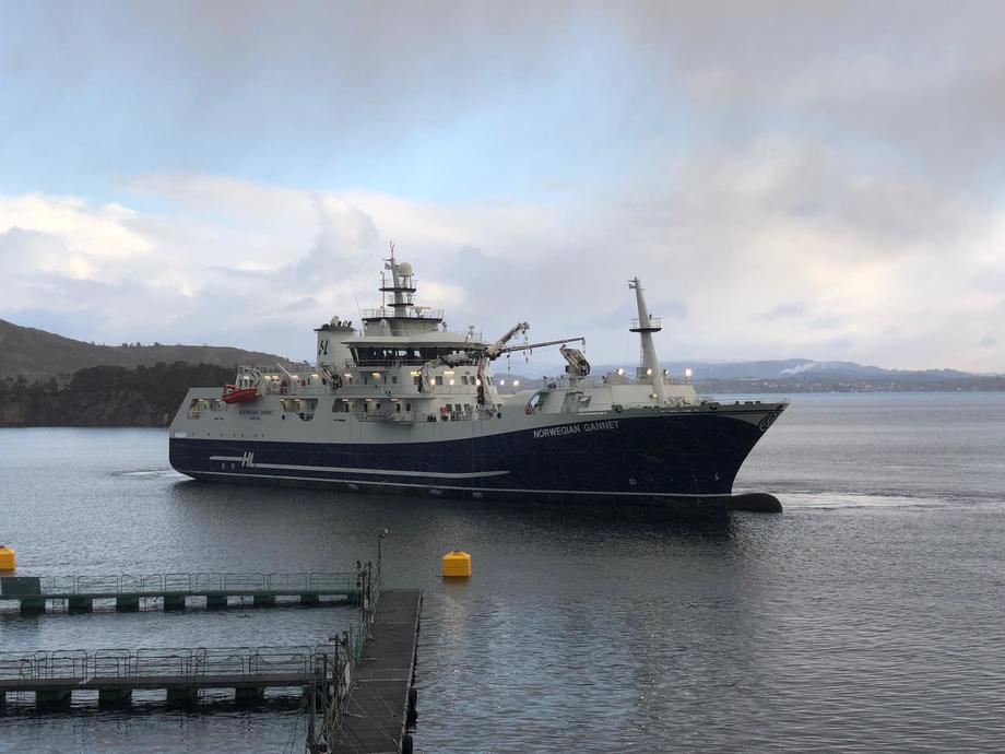 «Norwegian Gannet» driver nå med levering ca tre ganger i uken til Danmark. Foto: Jannicke Sekkingstad.