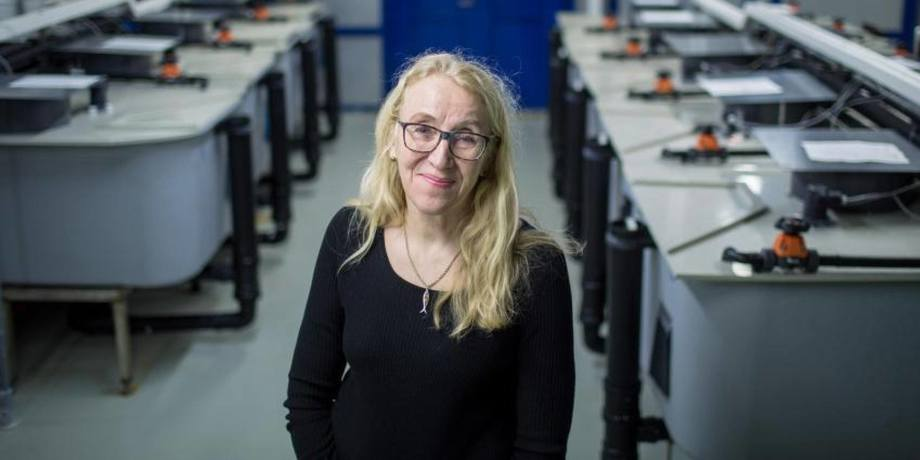 Brit Hjeltnes, som er fagdirektør for fiskehelse ved Veterinærinstituttet sier hun er bekymret for mer enn bare en fiskesykdom. Foto: Eivind Senneset.