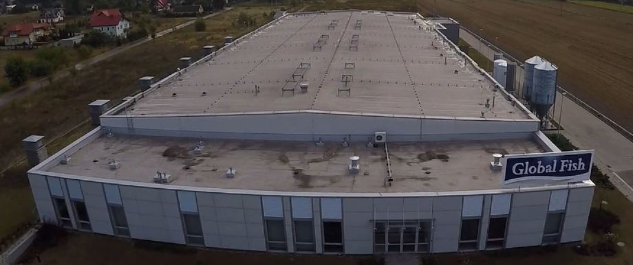 AquaMaof's RAS facility and R&D centre in Poland has already produced 6kg salmon. The company has now agreed a deal to supply a 2,500-tonne capacity plant to Russian investors. Photo: AquaMaof video.