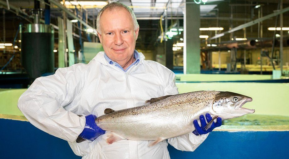 Pure Salmon's head of production is former Marine Harvest Scotland regional business manager and Huon general manager aquaculture David Cahill, pictured with a salmon grown at AquaMaof's Polish facility. Photo: Pure Salmon.