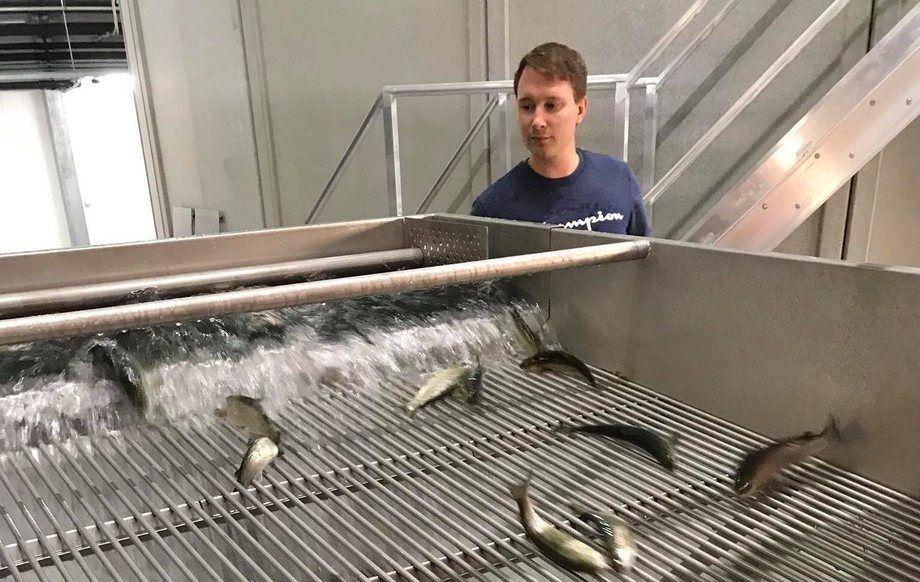 Lasse Solgren, driftssjef i Salangfisk AS, mener det er for lite fokus på fiskehelse og velferd i RAS-anlegg. Foto: Salangfisk AS.