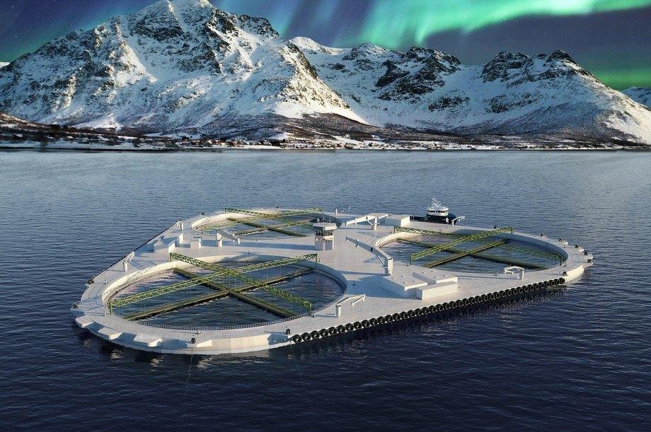 Fiskeridirektoratet har delvis omgjort eget vedtak om avslag på søknad fra Salaks AS om ni utviklingstillatelser til konseptet «FjordMAX. Illustrasjon: Salaks.