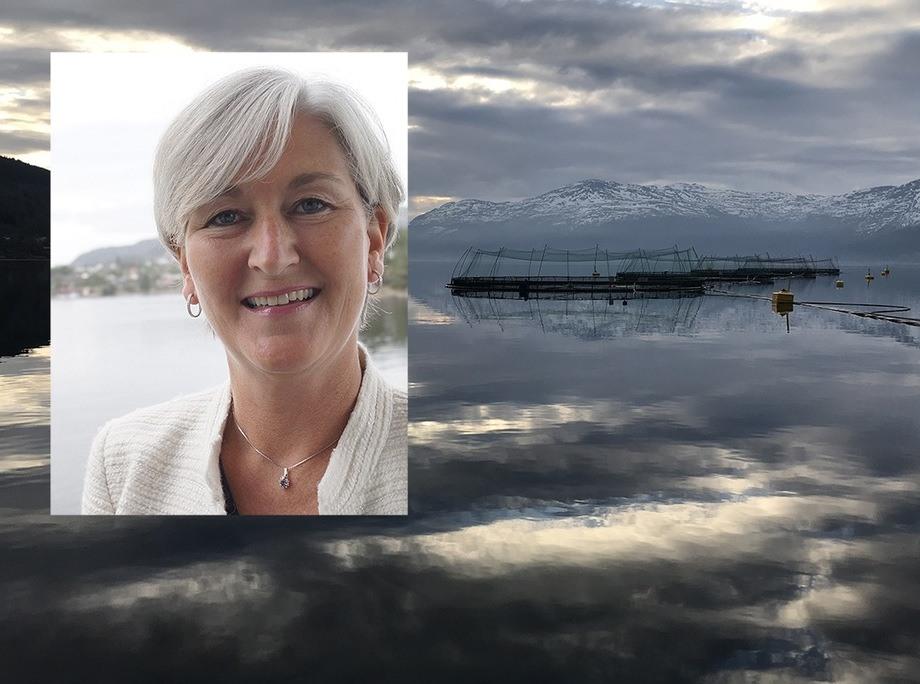 Anne Kristine Øen er adm. dir. i Salmon Group. Hun ser både tilbake på sjømatåret 2018, men også framover inn i 2019. Foto: Salmon Group.