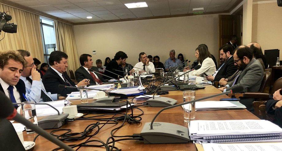 Alicia Gallardo, directora nacional de Sernapesca, exponiendo ayer en la Cámara de Diputados por los escapes de salmones de Ventisqueros. Foto: Cámara de Diputados.