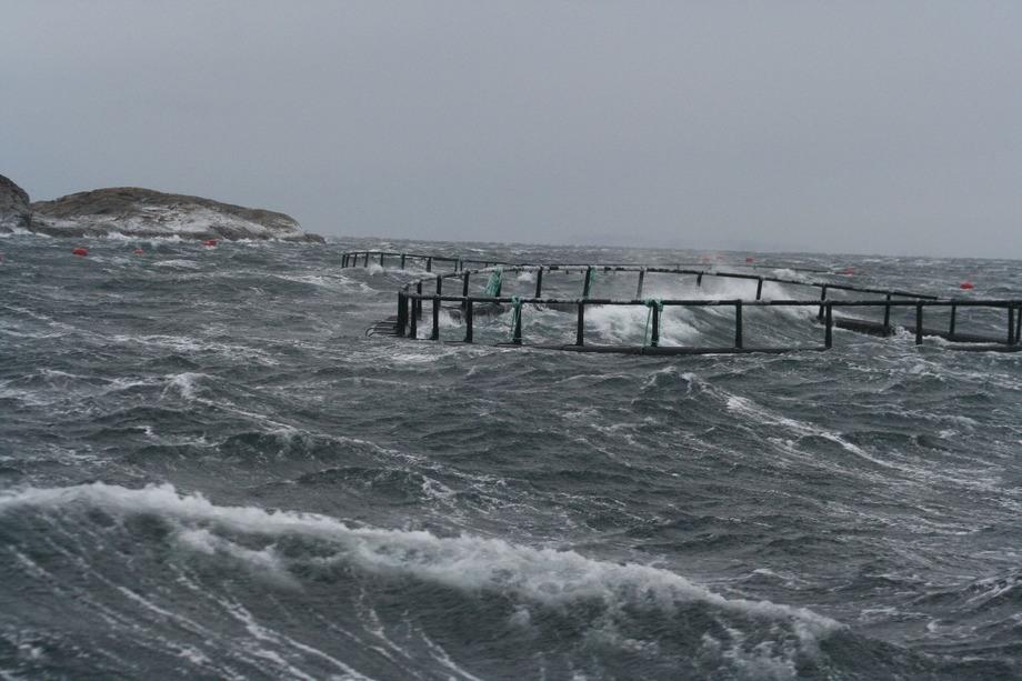 Illustrasjonsfoto merd i storm og uvær. Foto: SFI Exposed/Marius Dahle Olsen.