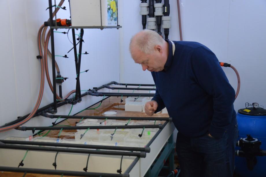 Frank Nilsen leder lusesenteret og forteller at senteret har oppnådd flere milepæler og viktig kunnskap som vil være viktig i videre arbeid med lus. Foto: Anette Elde Thomsen/Kyst.no.