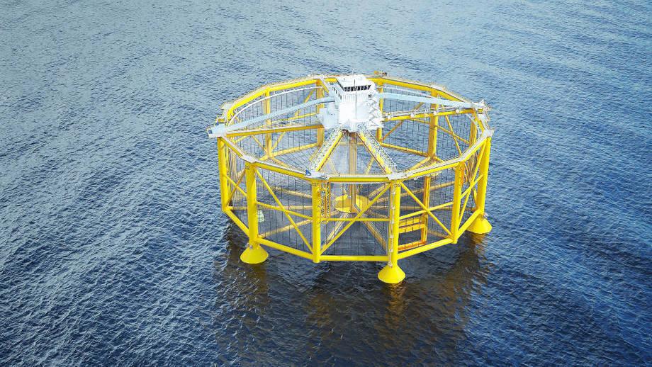 Det rømte 16 000 laks fra Salmars offshore havmerd. Foto: Salmar.
