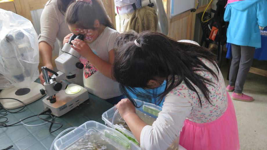 Los niños de Alerce aprendieron de Cambio Climático y Marea Roja, entre otros temas. Foto: IFOP.