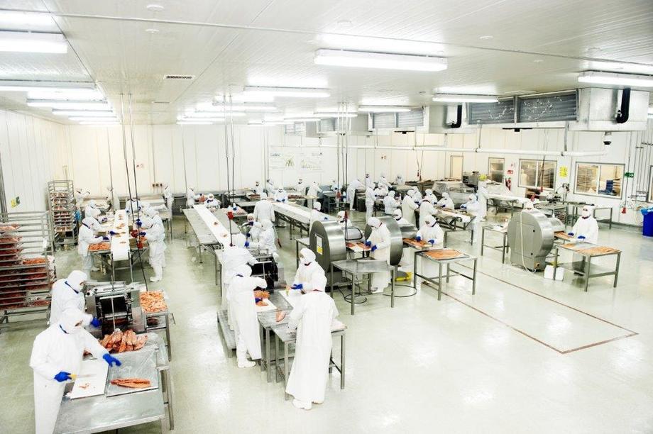 La empresa implementará monitores, señalética y programas de capacitación para reforzar aún más la cultura de gestión de residuos. Foto: Multiexport Foods.