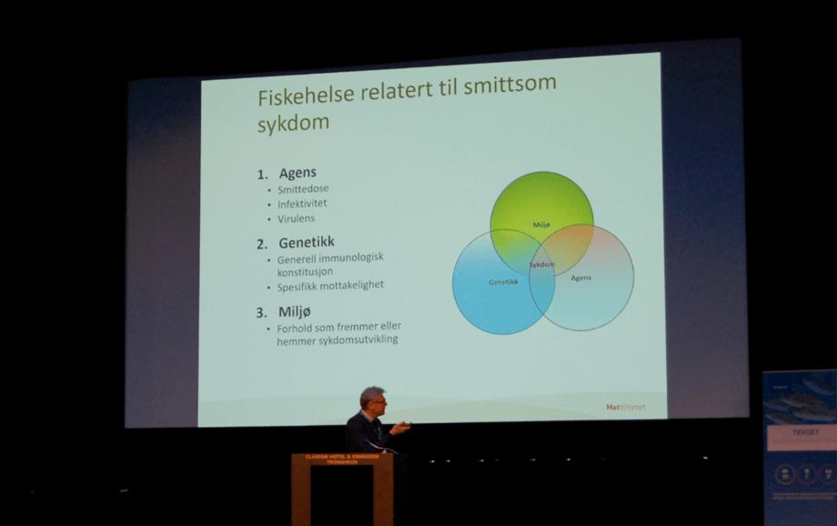 Rønningen under Tekset 2019. Foto: Harrieth Lundberg