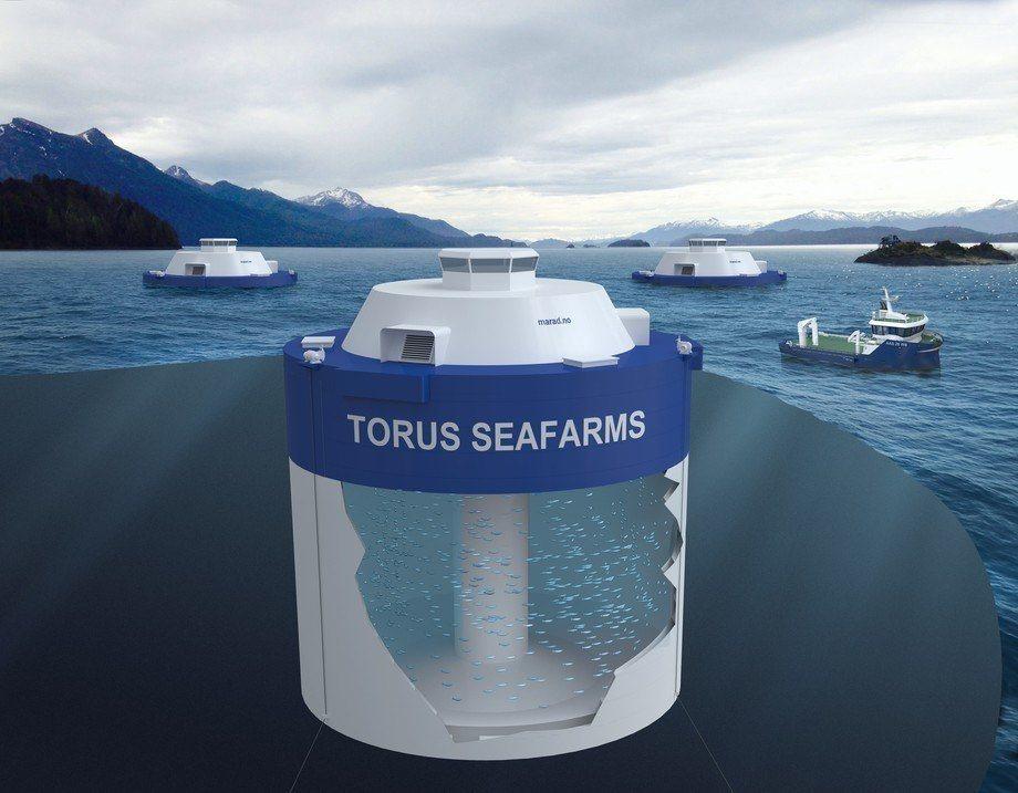 Marad Norway AS får ikke innvilget sin søknad om to utviklingstillatelser til konseptet «Torus Seafarm». Illustrasjon: Marad Norway