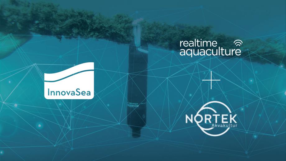 Innovasea fullfører nå kjøpet av Nortek Akvakultur. Foto: Innovasea