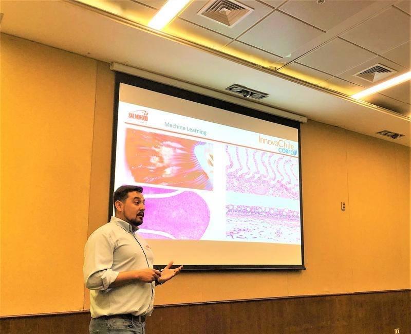 El seminario estuvo orientado principalmente a veterinarios y al equipo de salud de Multiexport Foods. Foto: Salmofood.